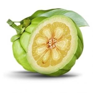 Suplimente nutritive pentru Cresterea masei musculare - PRO Nutrition