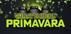 Curatenie De Primavara