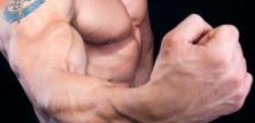 Ghidul testosteronului: Cum să atingi nivelul optim
